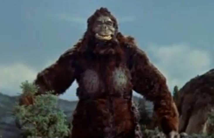 King_Kong_vs._Godzilla_-_38_-_Pose
